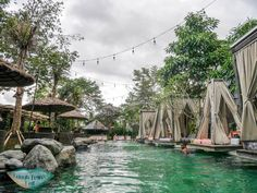 folk pool and garden ubud bali indnoesia - Laugh Travel Eat