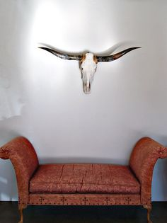 Yep. I have to have a longhorn on my wall.