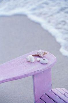 the sea... and sea shells