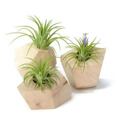 Reclaimed Wood Planters 3Pc, 72$, now featured on Fab.