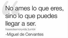 #Cervantes