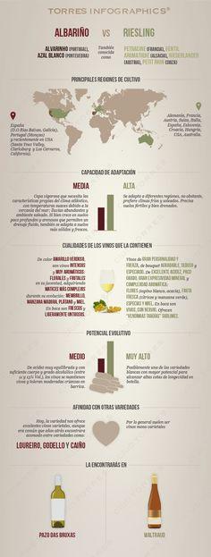 #Infografía: Albariño Vs Riesling. #Vino