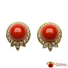 Red Coral gemstone provide with ocean's immense energy and, at the same time, calm to stay grounded.