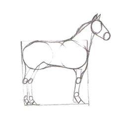 TB: Tegne hest - steg for steg