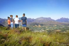 Guided Hiking in the Cape Winelands   Fun Things To Do - Dirty Boots Vine Trellis, The Mont, Mountain Trails, Table Mountain, Nature Reserve, South Africa, Stuff To Do, Things To Do, Scenery