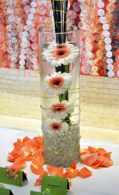 Tall Cylinder with Submerged Gerbera Daisies