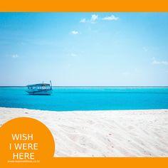 이제는 당신이 이 곳에 있어야할 시간입니다. 자....몰디브로 떠나볼까요~?!   #리얼몰디브 #몰디브 #Maldives  #몰디브여행사 #몰디브리조트 #traveling