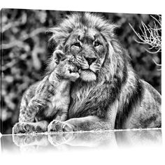 Beautiful Lion with Cub in Monochrome Wall Art on Canvas Home Loft Concept Size: 80 cm H x 120 cm W Lion Wall Art, Tree Wall Art, Canvas Home, Canvas Art, Cubs Tattoo, Wolf Canvas, Beautiful Lion, Cute Lion, Watercolor On Wood