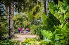 Parque San Arcadio de #Osuna #Sevilla