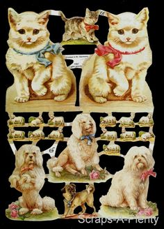 German Victorian Style Embossed Scrap Die Cut Dogs Cats EF 7067 for sale online Cut Cat, Die Cutting, Victorian Fashion, Ephemera, Vintage Christmas, Cats And Kittens, German, Scrap, Childhood