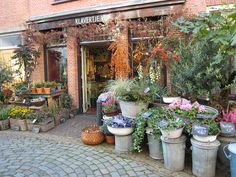 City of Haarlem, the Netherlands flower shop photo by rangaku1976, via Flickr