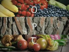 Isotonix® OPC-3® is a powerful antioxidant that fights free radical damage. The OPCs chosen for OPC-3 are prepared from grape seed, red wine, bilberries, Pycnogenol from pine bark and citrus fruit. This combination of powerful OPCs is unique to OPC-3, as is the Isotonix® delivery system, which enables rapid and highly efficient absorption of the OPCs.