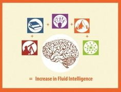 Seek Knowledge + Challenge Yourself + Think Creatively + Do Things The Hard Way + Network = Increase in Fluid Intelligence