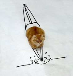 Doodle Challenge Transforms Ordinary Cat Photo into Fantastically Amusing Scenes Funny Cats, Funny Animals, Cute Animals, Crazy Cat Lady, Crazy Cats, Doodle Challenge, Les Doodle, Photo Chat, All About Cats