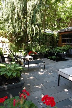 Backyard Before & After | The Art of Doing Stuff