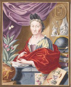 Maria Sibylla Merian German-born living in the Netherlands had a successful career as an artist botanist naturalist & entomologist.