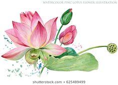 Watercolor Lotus, Lotus Painting, Mural Painting, Rajasthani Painting, Lotus Flower Art, Flower Drawing Tutorials, Illustration Blume, Floral Drawing, Dragonfly Art