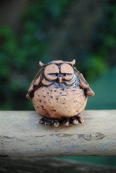 The result of too many mice #owl #cute