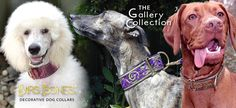 Designer Dog Collars By Mrs. Bones Decorative Designer Dog Collars