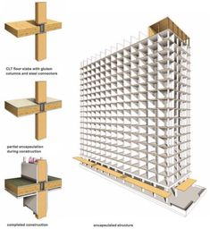 World's tallest timber tower to be built in British Columbia
