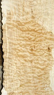 Quilted Maple - the art of nature Wood Logs, Wood Slab, Raw Wood, Wood Veneer, Wood Grain, Wood Furniture, Types Of Furniture, Hardwood Lumber, Into The Woods