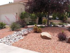 Xeriscaping Dallas, TX and surrounding areas