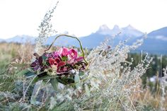 A stunning orchid centrepiece by Flowers by Janie as seen in the gorgeous Natural backdrop of Canmore, Alberta