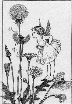 Ida Rentoul Outhwaite(1888 – 1960), was an Australian illustrator of children's books. Her work mos