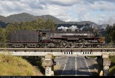 RailPictures.Net Photo: 5917 Lachlan Valley Railway Steam 2-8-2 at Coffs Harbour, Australia by Peter Reading