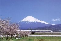 Mount Fuji in Japan with a Shinkansen and Sakura blossoms in the foreground Places To Travel, Places To See, Travel Destinations, Lonely Planet, Monte Fuji Japon, Tokyo To Kyoto, Hiroshima Peace Memorial, Japan Train, Mont Fuji