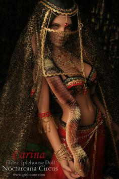 Carina - NoctarcanaCircus  Ball jointed Doll Total Shop :::Iplehouse.net::