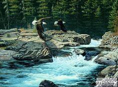 Spirit of McDonald Creek