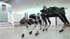 Boston Dynamics SpotMini Robot