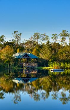 The Slough at Six Mile Cypress in Fort Myers, Florida