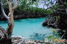Isla de Guiligan... Puerto Rico