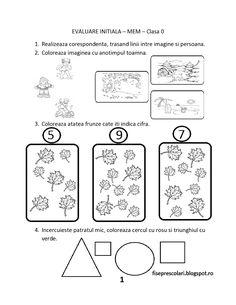 FISE de evaluare initiala MEM (Matematica si explorarea mediului) - Clasa Pregatitoare | Fise de lucru - gradinita