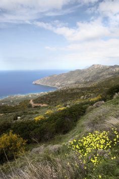 West of Crete, along the road from Elafanisi to Kissamos