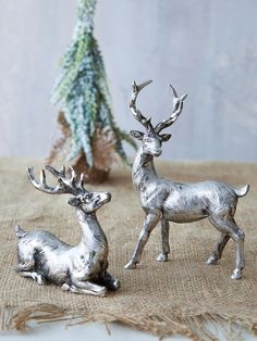 Nordic Silver Deer, gorgeous