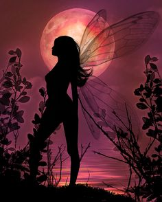 Fairy by the moon
