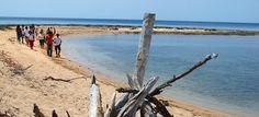 Con i suoi 17 chilometri di spiaggia bianca e soffice incorniciata dalle dune coronate di macchia mediterranea, Porto Cesareo svela scorci da cartolina dove spiccano le tonalità turchesi del mar...