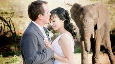Helgard & Liechen Wedding Highlights at Askari Game Lodge & Spa.  Jacques Crafford Wedding Films  #atGuvon #HitchedAtGuvon