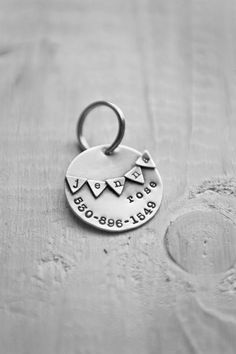 Whimsy Banner Pet Tag.