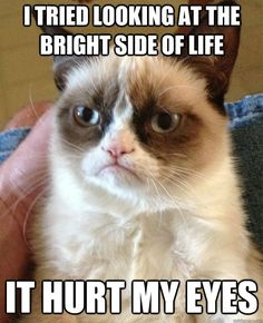 i tried looking at the bright side of life it hurt my eyes - Grumpy Cat
