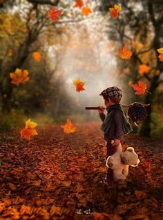 little boys walking through the leaves in the fall