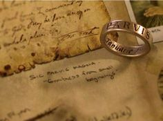 """SIC PARVIS MAGNA PARVIS MAGNA: meaning """"Greatness from small beginnings"""""""