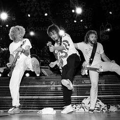 Sammy Hagar Eddie Van Halen Michael Anthony