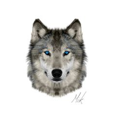 Wolf Face by Mikstyx