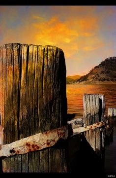Old jetty Burrinjuck Dam NSW Australia