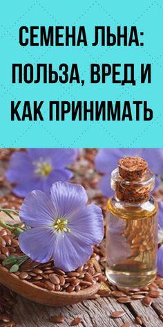 Kraut, Life Hacks, Table Decorations, Health, Knowledge, Health Care, Lifehacks, Dinner Table Decorations, Salud