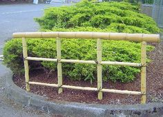 #bamboo hand rail